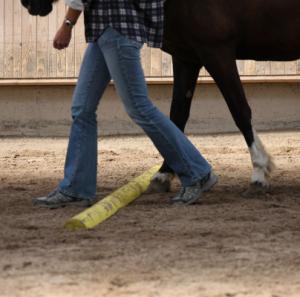 Menschen- und Pferdebeine